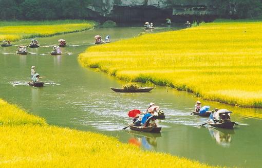 Hoa Lư, Tam Cốc trong ngày